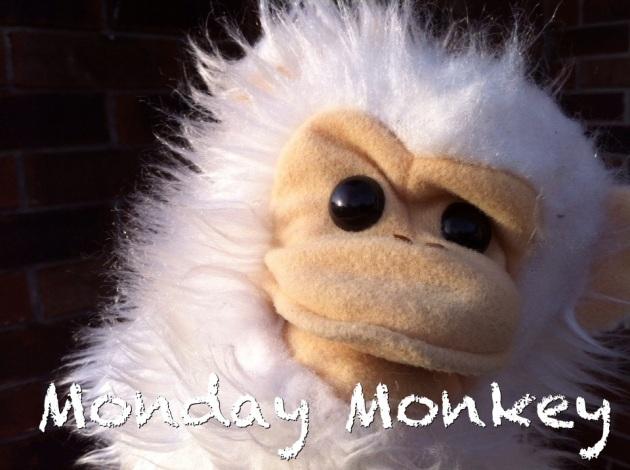 monday-monkey